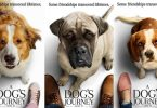 First Look at Universal Pictures A Dog's Journey Trailer
